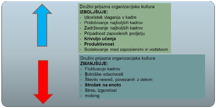 predstavitev_DPP_7